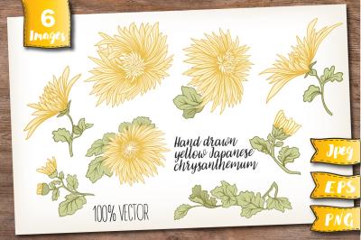 Yellow chrysanthemum set