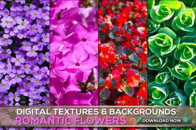 100 Flower Textures