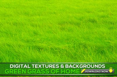 100 Grass Textures