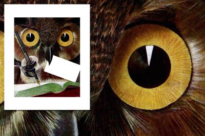Vintage Birds: Wise Owl Journaling
