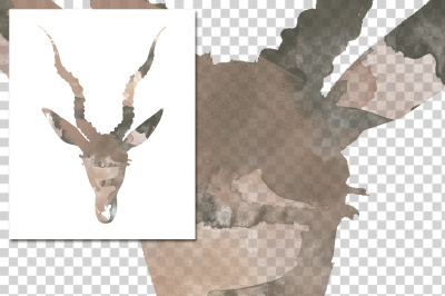 watercolor silhouettes: watercolor Young Black Buck