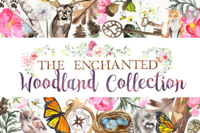 The Enchanted Woodland Collection