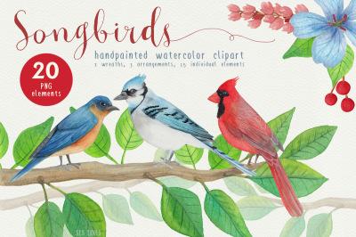 Song Bird Watercolor Clipart