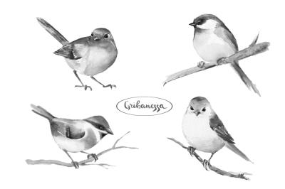 Birds. Watercolor set