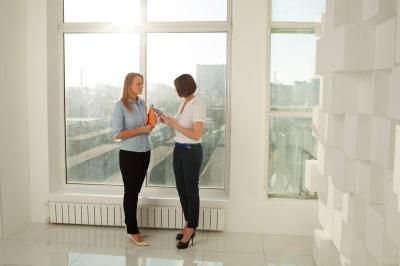 Two colleagues standing at window in office