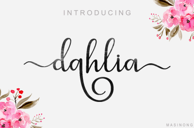 dahlia script