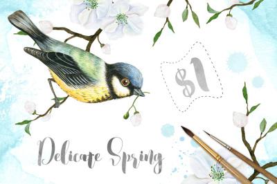 Delicate Spring Set