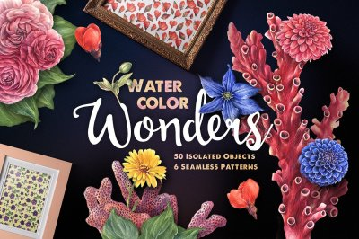Watercolor Wonders Graphic Kit