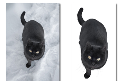 Black cat in the snow. A set of two files: a JPEG with a resolution of 300 dpi in the original, in JPEG format, isolated on a white cat.