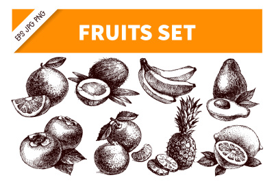 Hand Drawn Sketch Fruits Vector Set