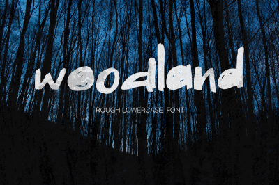 Wooland - rough lowercase font
