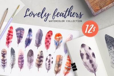Lovely Feathers. Watercolor set