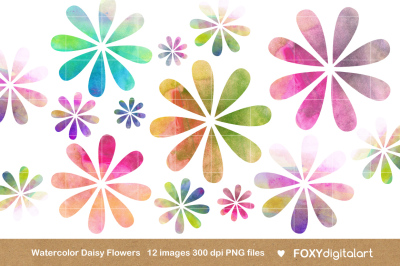 Watercolor Flowers Clipart Daisy