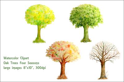 Watercolor trees four seasons