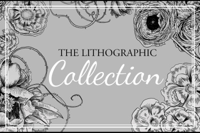 The Lithographic Collection