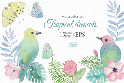 Tropical watercolor elements
