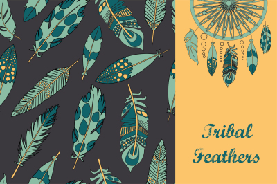 Tribal feather and arrows set