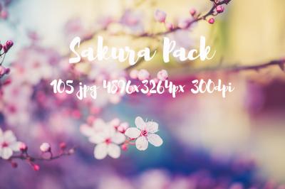 Sakura photo pack