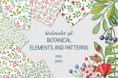 Watercolor botanical patterns