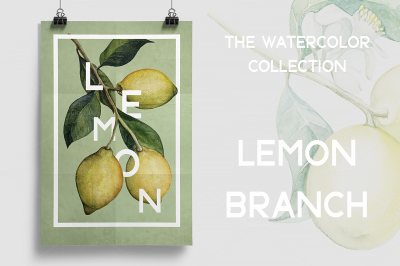 Watercolor lemon branches