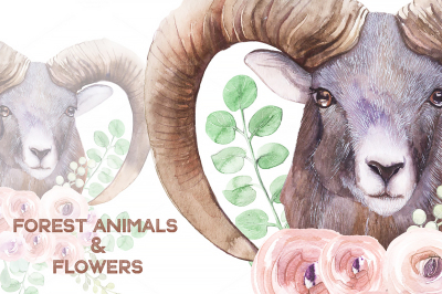 Forest animals and succulents