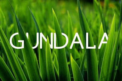 Gundal Font