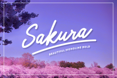 Sakura Bold Font Set