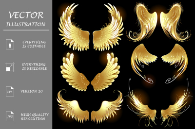 Golden wings of angels ( Gold wings )