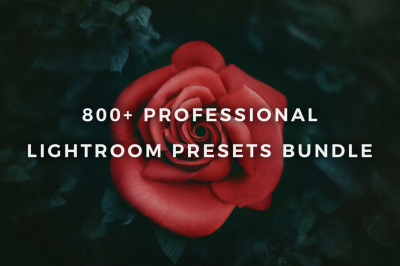 800+ Professional Lightroom Presets Bundle