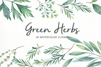 Green Herbs Watercolor clipart