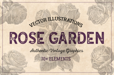 70 Vintage Vector Roses