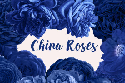China Roses Vintage Watercolor Roses