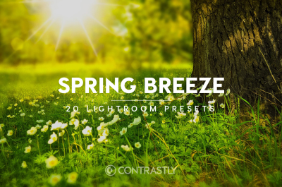 Spring Breeze Lightroom Presets