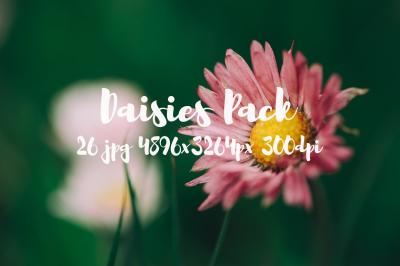 Daisies Pack