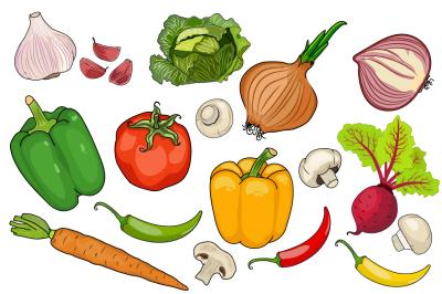 Vegetables-BIG set