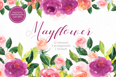 Mayflower Floral Watercolor Clip Art