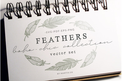 Boho-Chic Feathers Vectors & Pattern