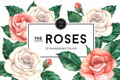 Rose Flowers Watercolor Clipart