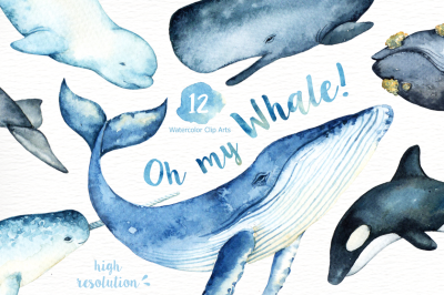 Oh My Whale! Watercolor Clip Arts