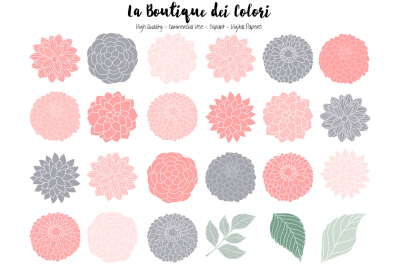 Pink and Grey Dahlia Flowers Clipart