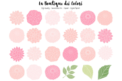 Soft Pink Dahlia Flowers Clipart