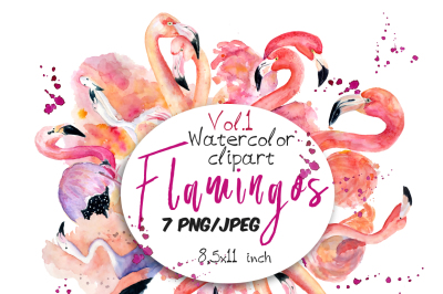 Watercolor flamingo clipart Tropical summer set. Vol.1