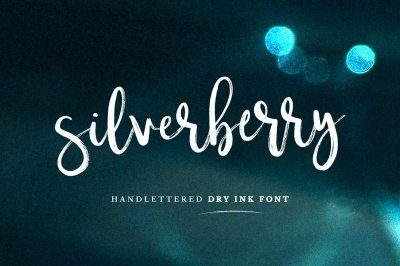Silverberry - Dry Ink Font