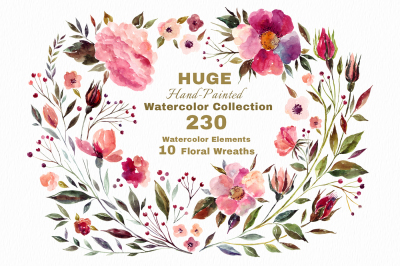 230 Watercolor floral elements