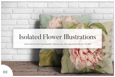 5x Isolated Flower Illustration (01)