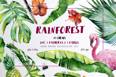 Rainforest tropical set