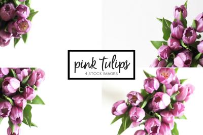 Pink Tulips | 4 Stock Image Bundle