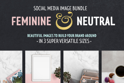 Feminine & Neutral stock bundle