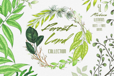 Forest Land collection of leaves