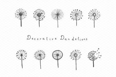 Decorative dandelions + patterns